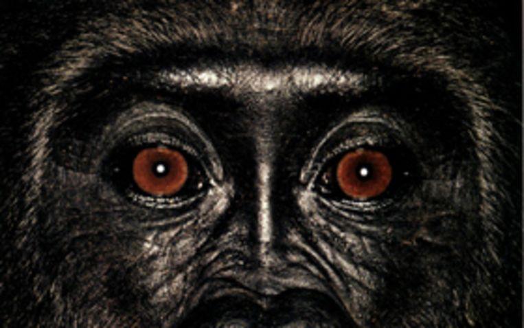 Foto: James Mollison uit 'James & Other Apes', Chris Booth, 2006. Beeld