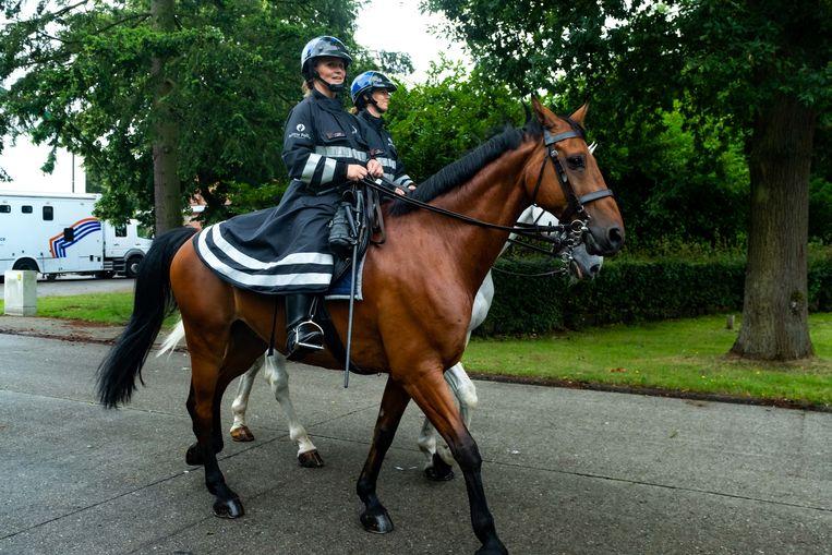 De federale politie levert logistieke bijstand met onder andere paarden en een helikopter.