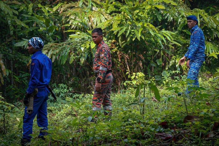 Speurders doorzochten de jungle.