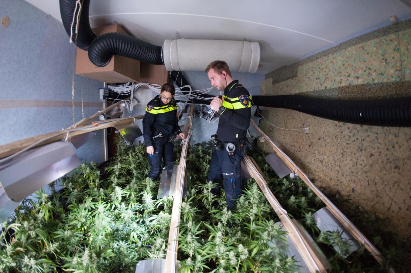 Het Achterhoekse platteland is (nog) geen luilekkerland voor drugscriminelen.