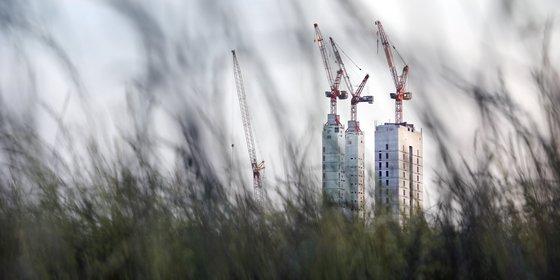 Planbureau slaat alarm: bos-, heide- en watergebieden lijden onder de oprukkende stad