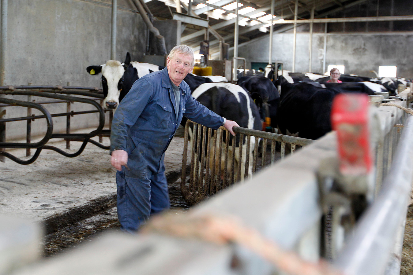 De bypass zorgt ervoor dat boeren hun land verliezen. Zij worden uitgekocht. De een gaat rentenieren, de ander bouwt elders een nieuw bestaan op. Gerrit Netjes is de eerste boer die vertrekt. Naar een nieuwe boerderij in Eemdijk.