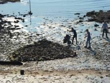 Kont van schip onder stenen verdwenen op Vlissings 'Oranjestrandje'