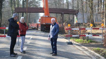 Drukke Naamsesteenweg afgesloten voor plaatsing nieuwe houten brug