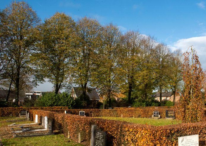 Naast de nieuwe begraafplaats aan de Engweg in Putten, achter de bomenrij, komen 18 appartementen in twee gebouwen. Projectontwikkelaar De Bunte Vastgoed puzzelt op een passend ontwerp.
