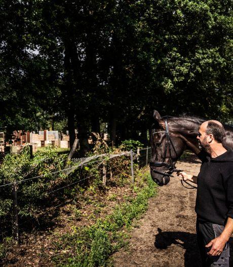 Verzet van ruiters tegen lasergameveld  in Wolfheze: 'Paarden worden onhandelbaar, het is levensgevaarlijk'