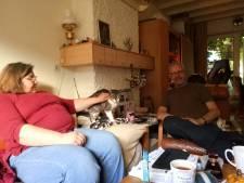 In de Pioenroosstraat in Eindhoven: Liever een kat die al iets heeft meegemaakt