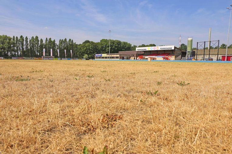 Geen enkel groen sprietje te bekennen op de grasmat dezer dagen.