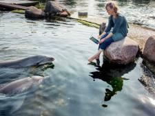 Harderwijkse dolfijnen schitteren in mystiek avontuur van schrijfster Annelot Borleffs