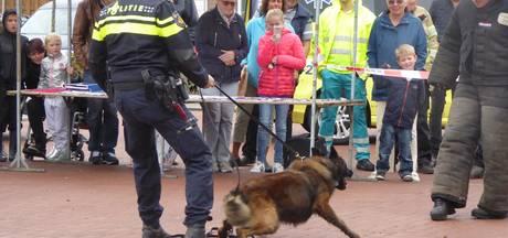 Agent houdt woedende politiehond in bedwang voor ogen Lopiks publiek