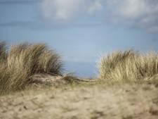 Geld naar ruiterpaden, strandje Hoofdplaat en plan Nieuwvliet