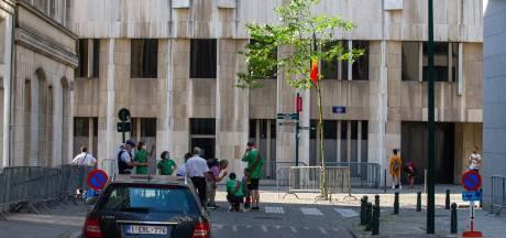 Le 712e Meyboom planté sans public à Bruxelles