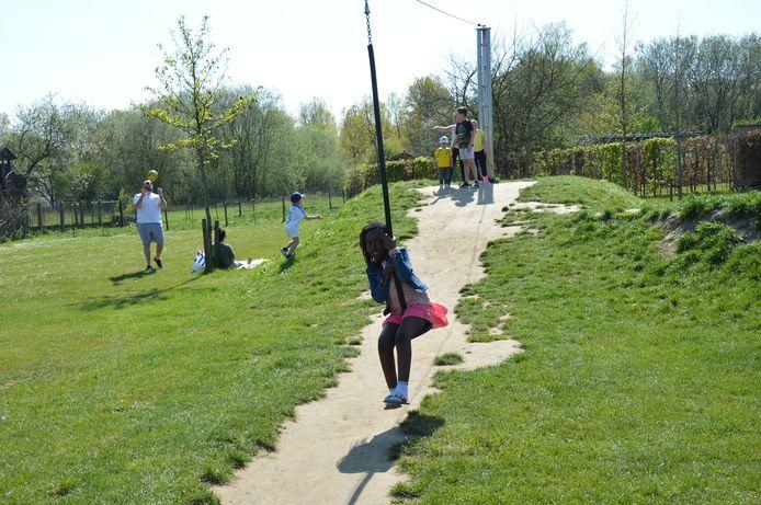 De gemeente wil voldoende groene plekjes behouden in Denderleeuw.