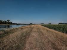 Vee moet van dijken langs IJssel, Vecht en Zwarte Water vanwege droogte