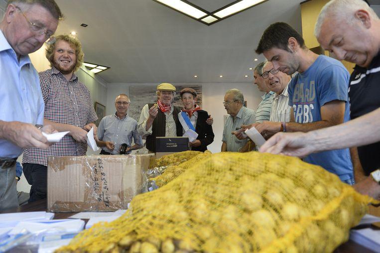 Vrijwilligers pakken 'petatjes' in voor de Gouden Petattenworp.