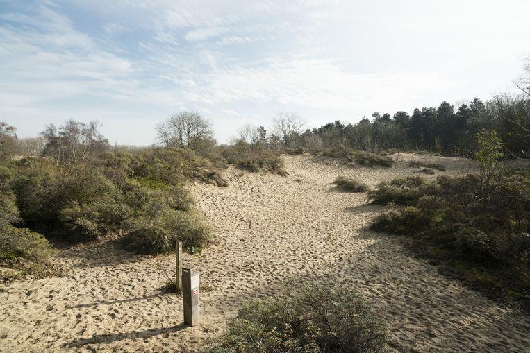 Natuurreservaat De Nachtegaal.
