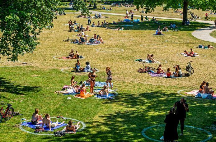 Coronacirkels of picknickcirkels in het Kralingse Bos, eerder dit jaar, in Rotterdam.