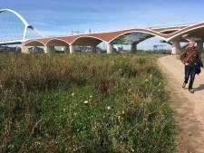 Architect van De Oversteek: 'Doe veel meer met deze stadsbrug'