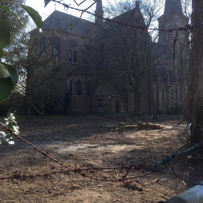De parochietuin zoals die er uitzag nadat vrijwilligers bomen en struiken hadden gekapt.
