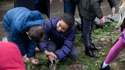 Leerlingen planten 2500 krokussen in bloemenwei