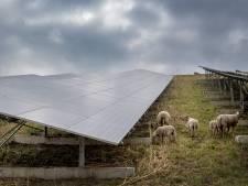 Echteld kan profiteren van zonnepark: 125.000 euro voor het dorp en korting voor de inwoners