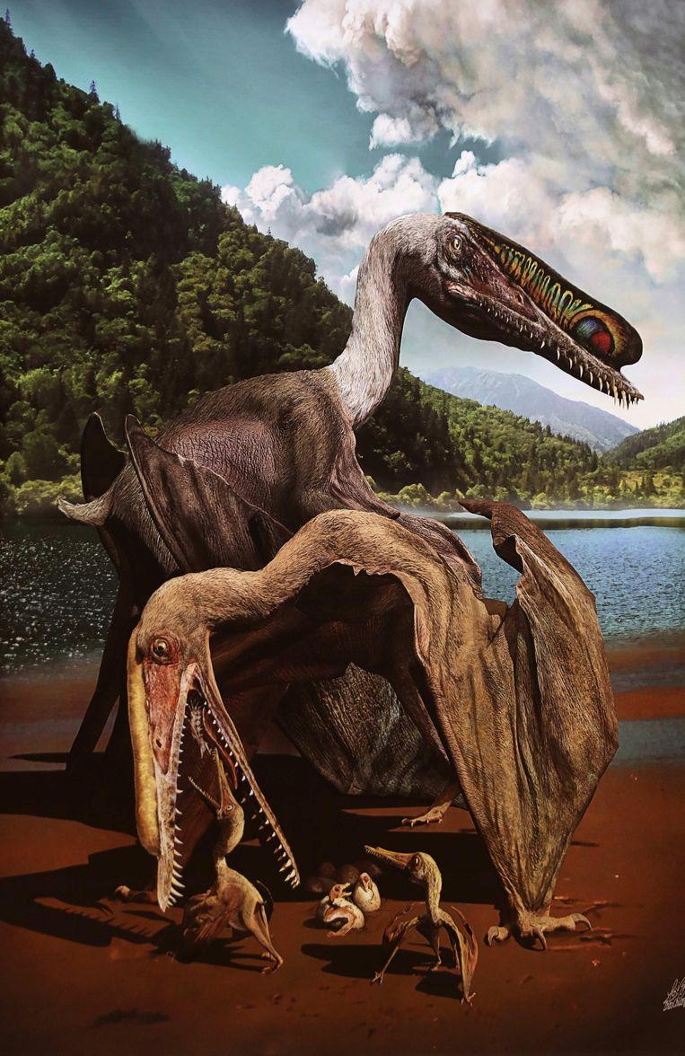 Zoveel eieren van de Pterosaurus op een plek vinden is een unicum.