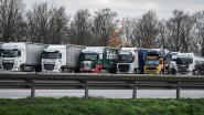 """Transportfirma's riskeren 2 miljoen euro boete voor sociale dumping: """"Oneerlijke concurrentie op West-Europese markt"""""""
