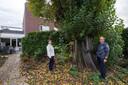 Goirle - Pix4Profs/René Schotanus. Andre en Netty Muller bij de gigantische Italiaanse populier in hun tuin.