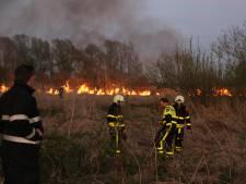 Brandweer extra alert: grote kans op natuurbranden
