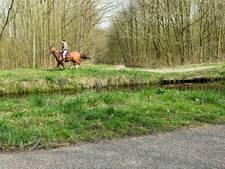 Boete voor amazone die paard verboden bos in zag rennen geschrapt