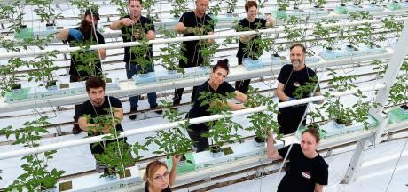 Bijeenkomst in provinciehuis Den Bosch: 'Noem arbeidsmigranten voortaan internationals. Dat klinkt beter'
