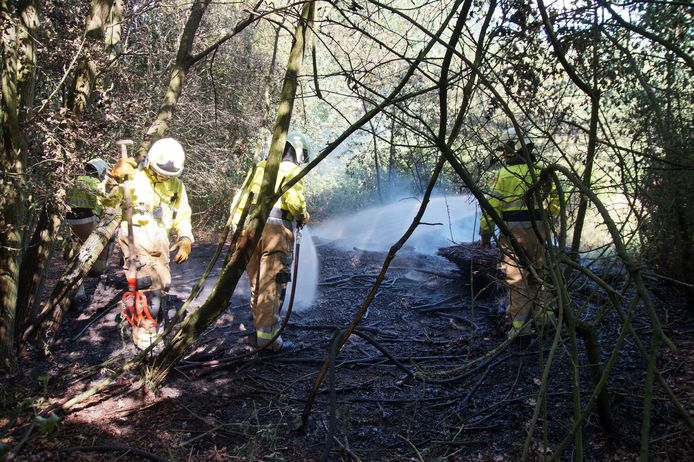 Beginnende bosbrand in Drunen