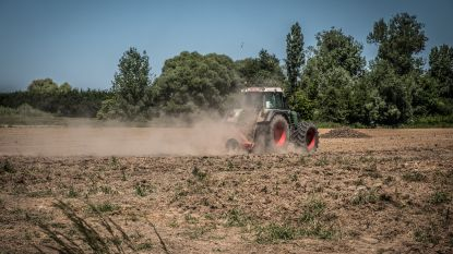 Klimaatverandering zal weinig impact hebben op wat op ons bord komt: aanhoudende droogte dwingt onze landbouwers niet  massaal quinoa te telen