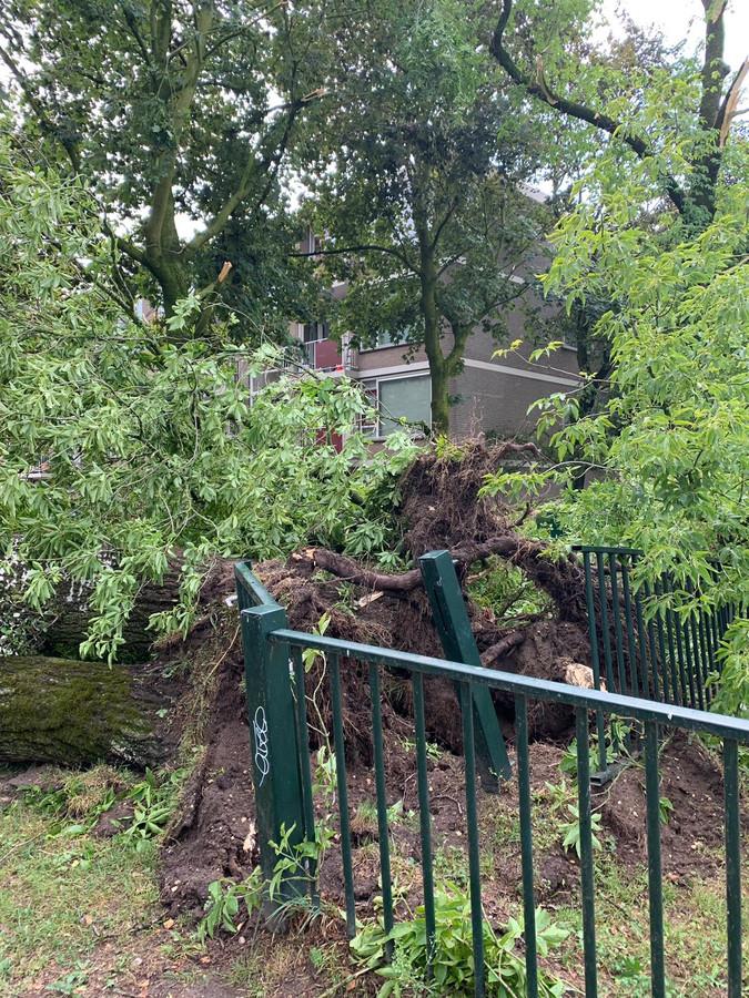 Ook aan de Vossendijk heeft de storm voor schade gezorgd.