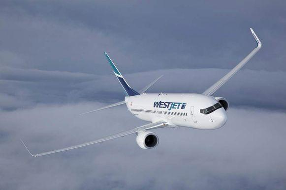 Vliegmaatschappij WestJet kan ook nog 175.000 euro aan compensaties terugeisen van de dronken passagier.