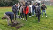 Guldensporencollege Kaai legt buitenklassen en ecologische tuin aan