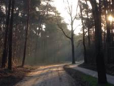 Geen maatregelen in Pannenhuisstraat: 'Weg is al onaantrekkelijk voor hardrijdend verkeer'