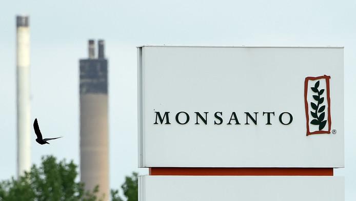 """Parfois appelée """"Monsatan"""" ou """"Mutanto"""" par ses détracteurs, la firme est aussi bien mise en cause pour les OGM que pour les effets du glyphosate, principe actif du Roundup, dont le caractère cancérogène fait l'objet d'études contradictoires."""