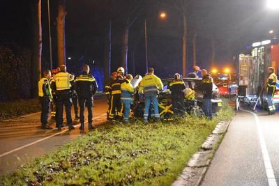 Vrouw (22) gewond na botsing tegen boom op Westerhagelaan in Breda