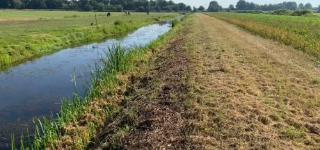 Fel protest tegen voorstel voor nieuwe weg in polder tussen Baarn en Soest: 'Vreselijk planvoorstel'