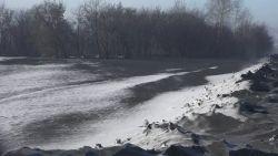 VIDEO. Inwoners Siberische regio zien letterlijk zwarte sneeuw