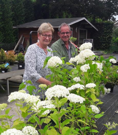Tuincentrum in Giessenburg sluit de deuren: 'Wie hier binnenstapte, ging altijd met iets weg'