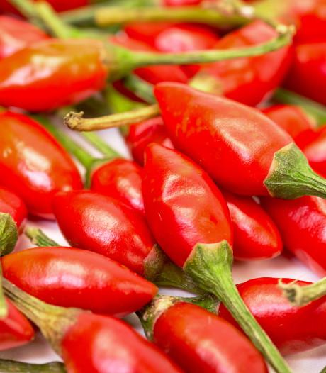 Raad Etten-Leur kan flink wat peper gebruiken
