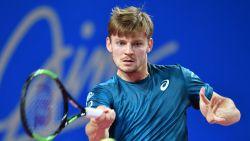 David Goffin naar halve finales in Montpellier - Loting Fed Cup: Elise Mertens opent tegen Parmentier