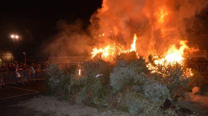 Landelijke Gilde organiseert kerstboomverbranding