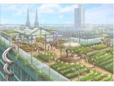 Plan: Bijen houden en fruit kweken op een weelderige daktuin in Tilburgse binnenstad