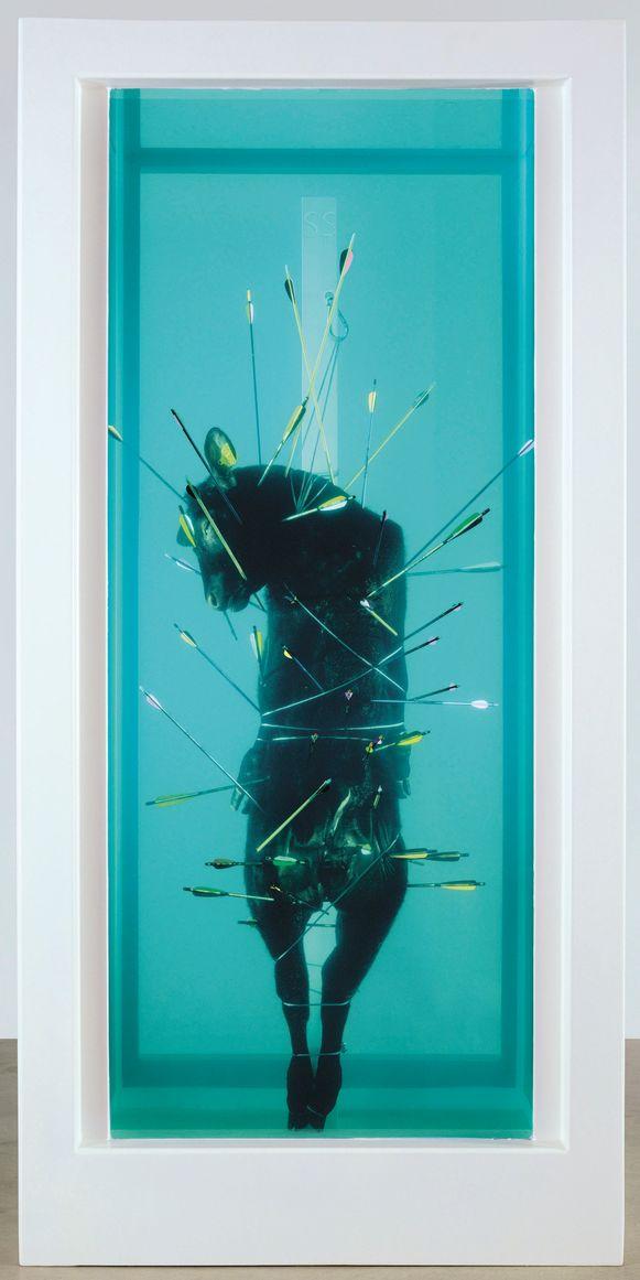 Saint Sebastian, Exquisite Pain van Damien Hirst.