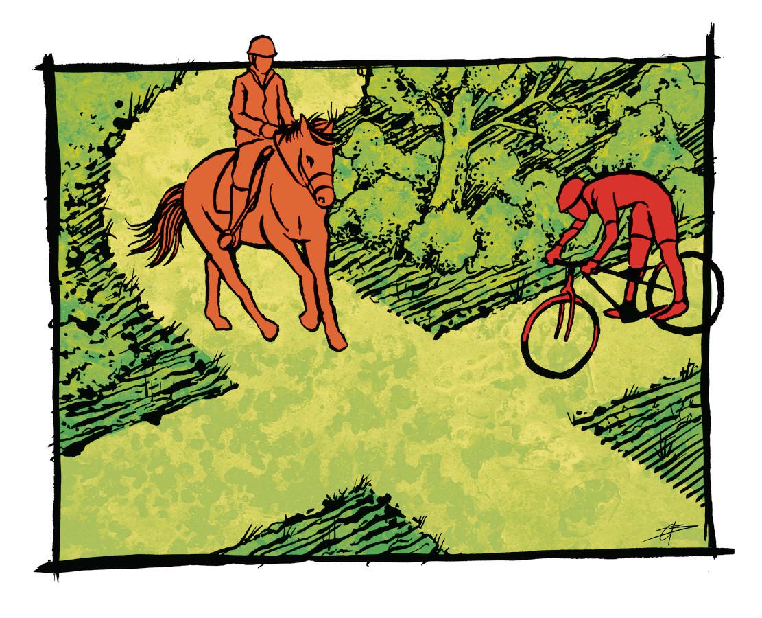 SITUATIE 1: Het ene bospad kruist het andere, ofwel: een kruispunt in het bos. Een mountainbiker komt aanfietsen en wil de kruising over, van rechts komt een paard met ruiter. Wie heeft er voorrang?  Antwoord onderaan dit artikel.