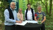 Bouwfirma en groene jongens werken samen: Durabrik en Natuurpunt vormen verwaarloosd perceel om tot volwaardig bos