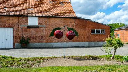 Na appel- en peerbeeld maakt kunstenaar Gaston Serneels (82) nieuw kersenmonument